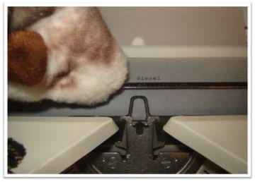 an-der-schreibmaschine21