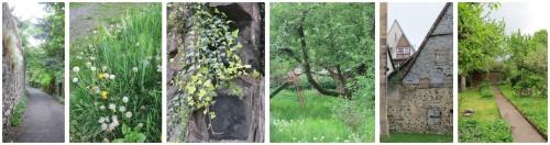 alsfeld_gärten