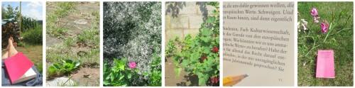 genSüden_Gartenlektüre
