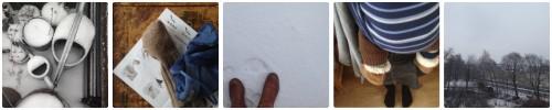 stunde-der-wintervoegel